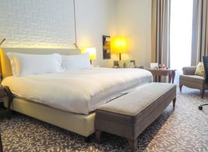 Ritz Carlton Vienna Review