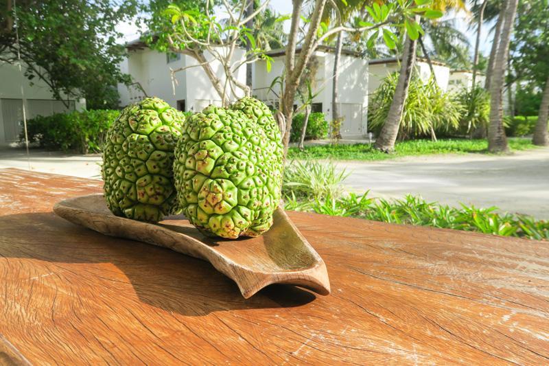 Kandooma Spa Review: Relax in Maldives Asia Blog Maldives Spas